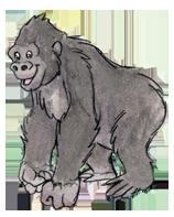 gorilla small